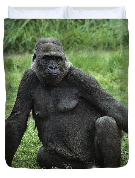 Western Lowland Gorilla Female Duvet Cover by Gerry Ellis