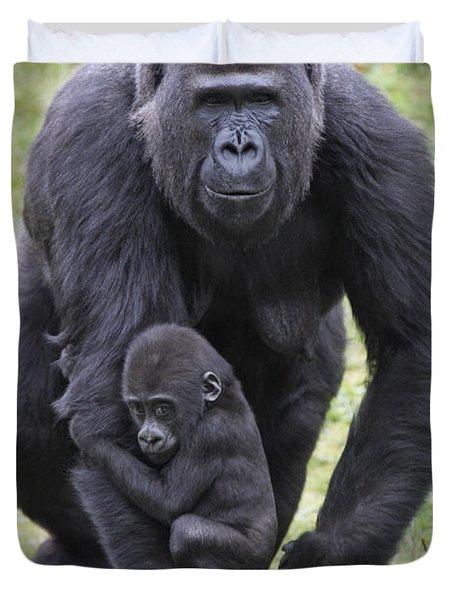 Western Lowland Gorilla Walking Duvet Cover by Duncan Usher