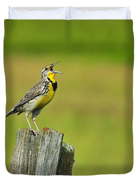 Western Meadowlark Duvet Cover by Tony Beck