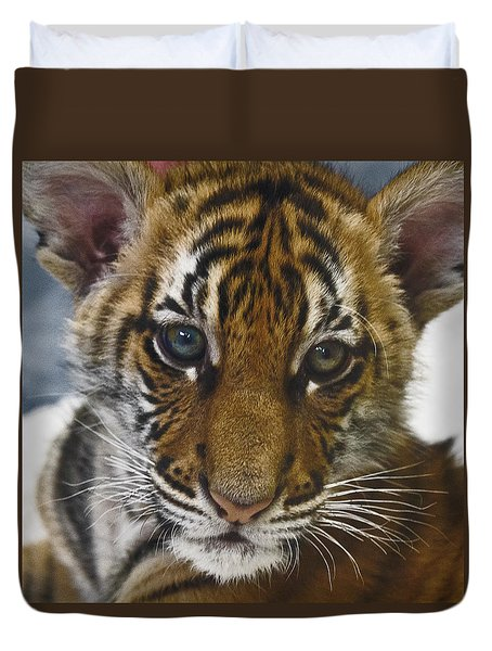 What A Face D3875 Duvet Cover by Wes and Dotty Weber