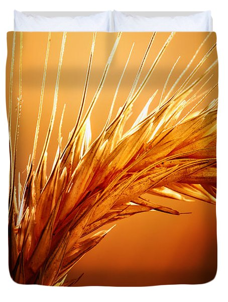 Wheat Close-up Duvet Cover by Johan Swanepoel