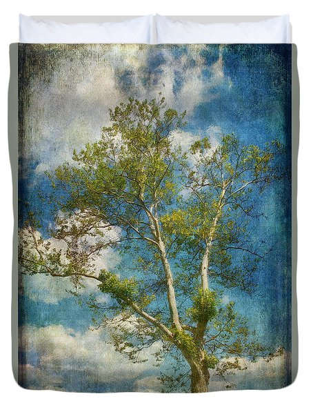 White Birch In May Duvet Cover by Lois Bryan