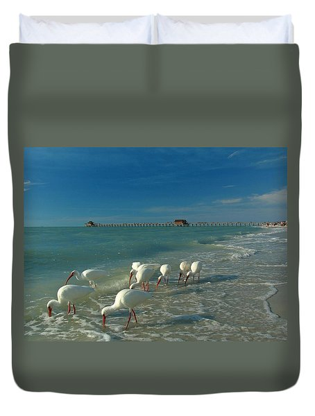 White Ibis near Historic Naples Pier Duvet Cover by Juergen Roth