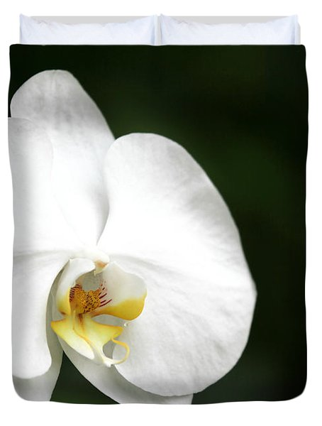 White Light Duvet Cover by Sabrina L Ryan