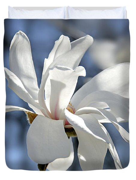 White Magnolia  Duvet Cover by Elena Elisseeva