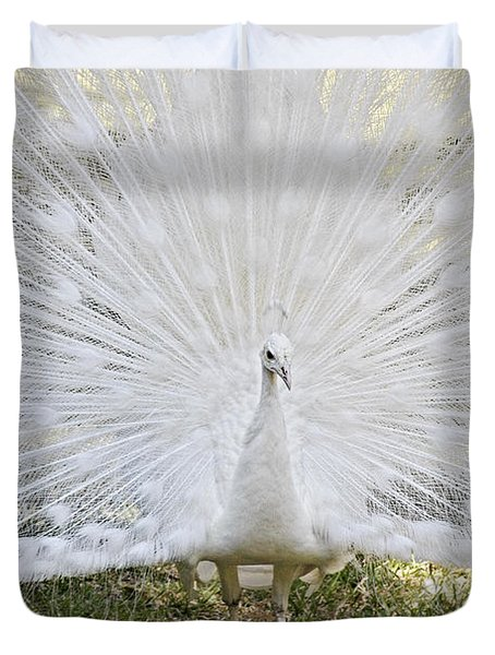 White Peacock - Fountain Of Youth Duvet Cover by Christine Till