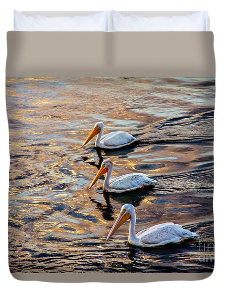 White Pelicans  In Golden Water Duvet Cover by Robert Bales