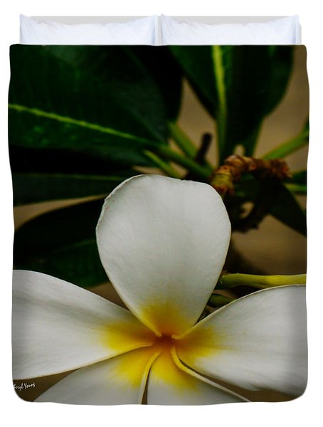 White Plumeria 2 Duvet Cover by Cheryl Young