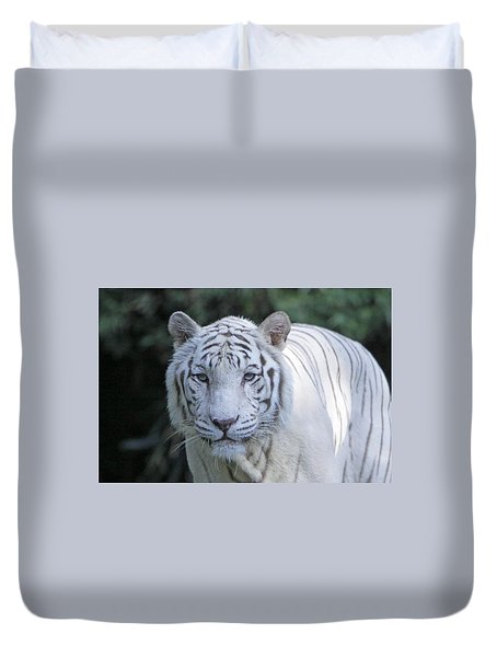 White Tiger Face Duvet Cover by Shoal Hollingsworth