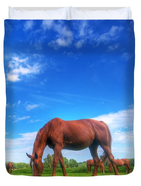 Wild Horse On The Field Duvet Cover by Michal Bednarek