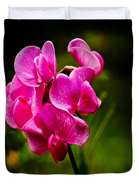 Wild Pea Flower Duvet Cover by Robert Bales