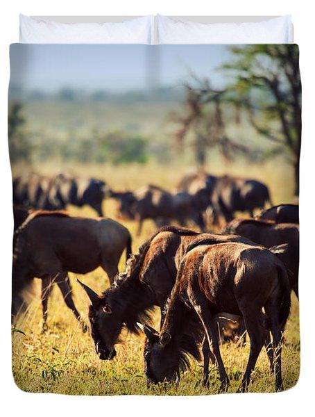 Wildebeests Herd. Gnu On African Savanna Duvet Cover by Michal Bednarek