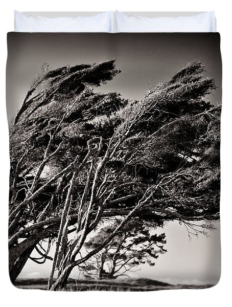Windswept Duvet Cover by Dave Bowman
