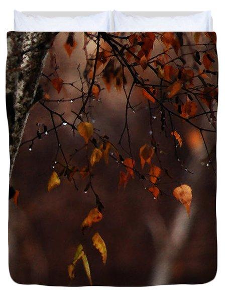 Winter Birch Duvet Cover by Linda Knorr Shafer
