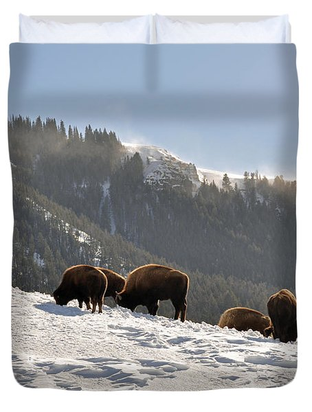 Winter Bison Herd in Yellowstone Duvet Cover by Bruce Gourley