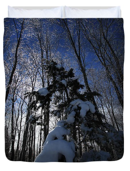 Winter Blue Duvet Cover by Karol  Livote