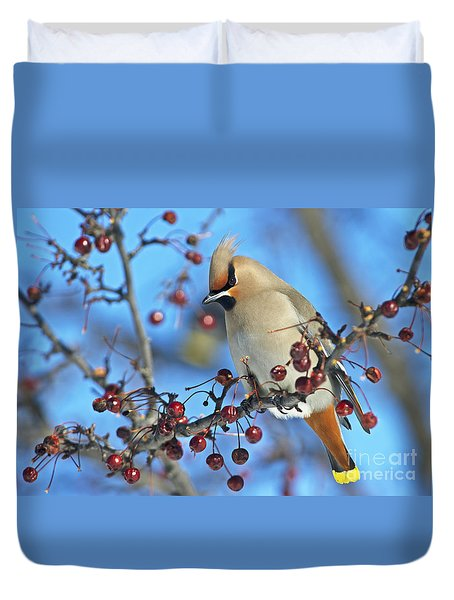 Winter Colors.. Duvet Cover by Nina Stavlund
