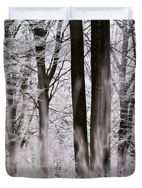 Winter Forest 1 Duvet Cover by Heiko Koehrer-Wagner
