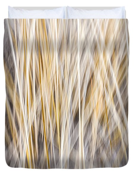 Winter grass abstract Duvet Cover by Elena Elisseeva