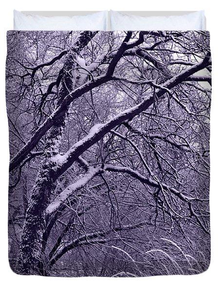 Winter in Purple Duvet Cover by Carol Groenen