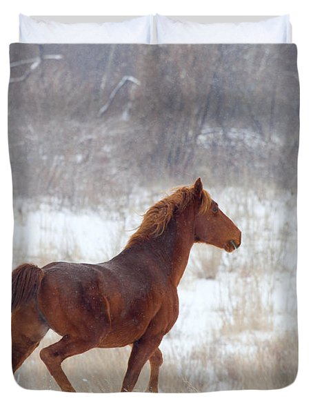 Winter Proud Duvet Cover by Mike  Dawson