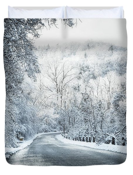 Winter road in forest Duvet Cover by Elena Elisseeva