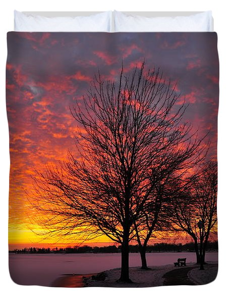 Winter Sunset Duvet Cover by Terri Gostola