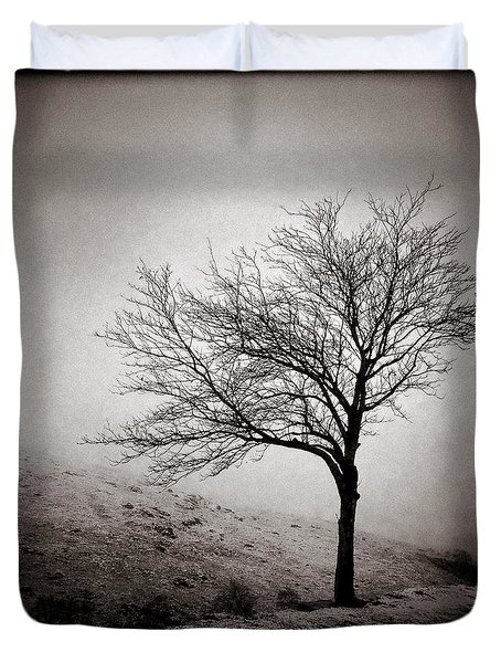 Winter Tree Duvet Cover by Dave Bowman