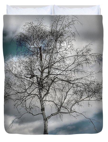 Winter Tree Duvet Cover by Todd Hostetter