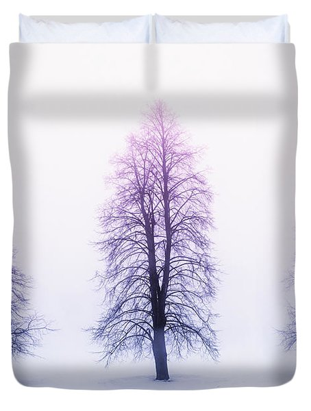 Winter Trees In Fog At Sunrise Duvet Cover by Elena Elisseeva