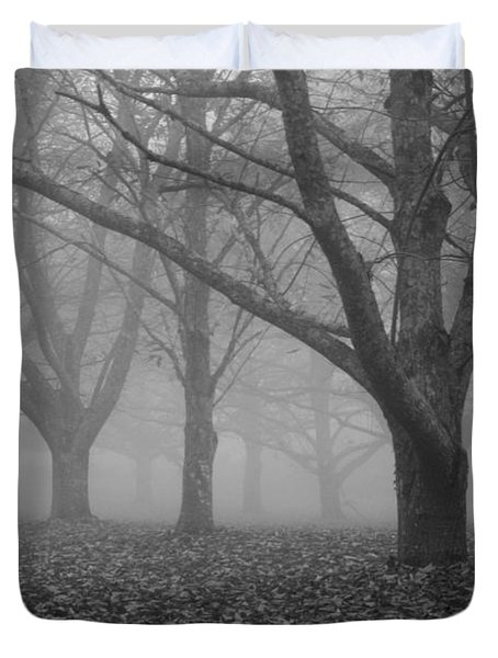 Winter trees in the mist Duvet Cover by Nomad Art And  Design