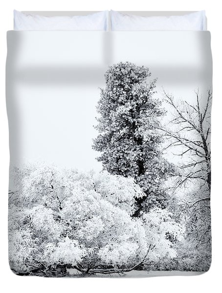 Winter White Duvet Cover by Mike  Dawson