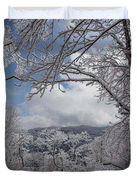 Winter Window Wonder Duvet Cover by John Haldane
