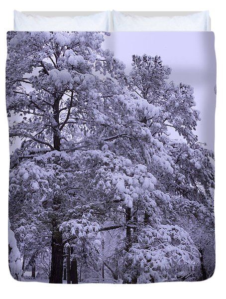 Winter Wonderland 3 Duvet Cover by Mike McGlothlen
