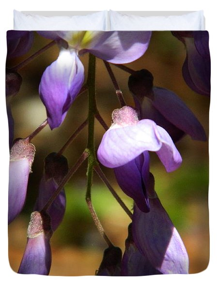 Wisteria 2 Duvet Cover by Andrea Anderegg