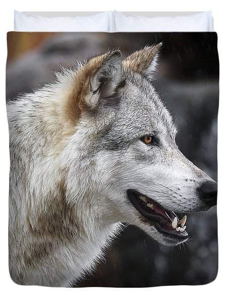 Wolf Smile D9933 Duvet Cover by Wes and Dotty Weber
