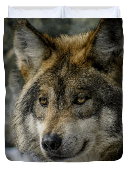 Wolf Upclose 2 Duvet Cover by Ernie Echols