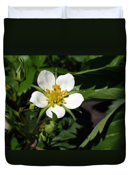 Wood Strawberry Duvet Cover by Christina Rollo
