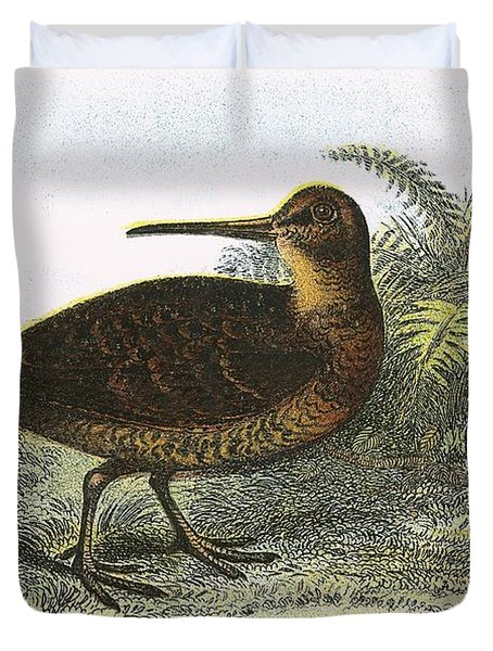 Woodcock Duvet Cover by English School