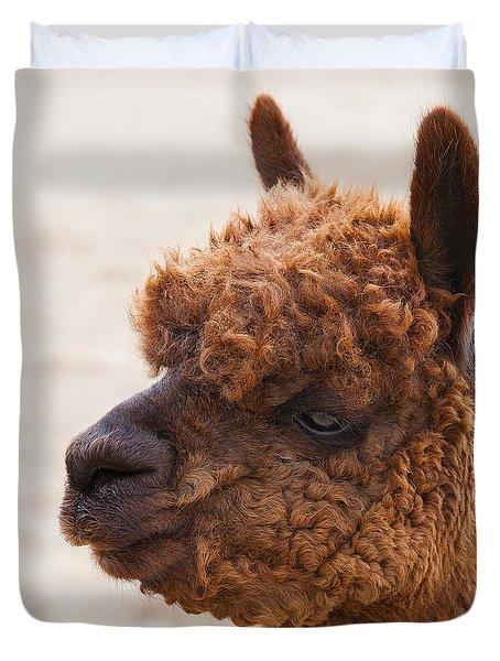 Woolly Alpaca Duvet Cover by Jerry Cowart