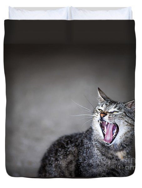 Yawning Cat Duvet Cover by Elena Elisseeva