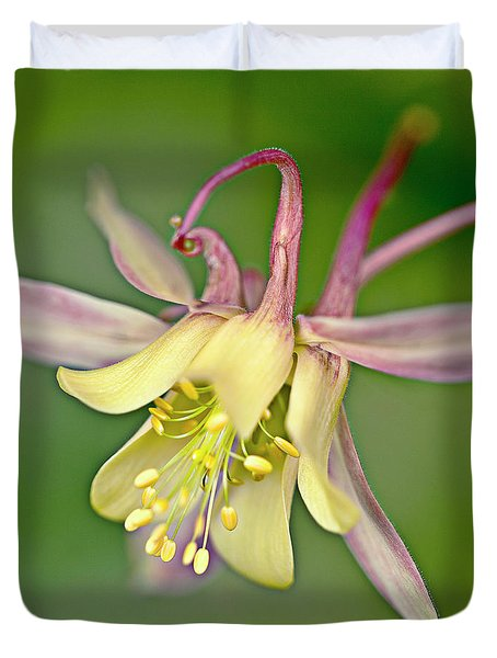 Yellow Aquilegia Bloom Duvet Cover by Heiko Koehrer-Wagner