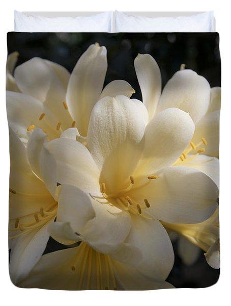 Yellow Clivia 1004 Duvet Cover by Terri Winkler