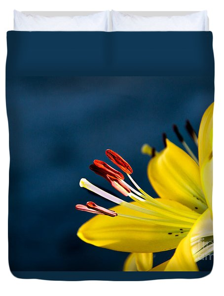Yellow Lily Stamens Duvet Cover by Robert Bales