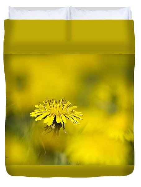 Yellow On Yellow Dandelion Duvet Cover by Christina Rollo