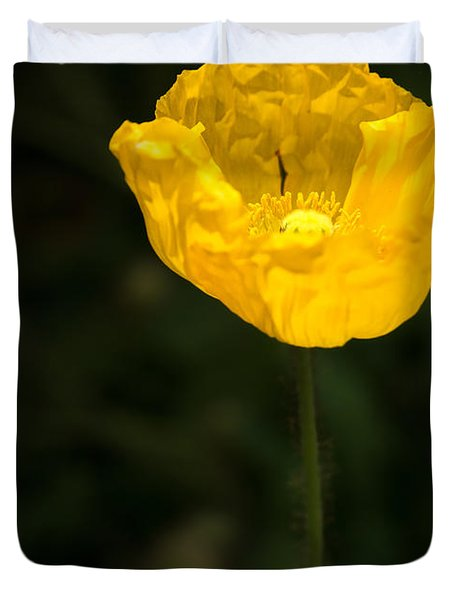 Yellow Poppy Duvet Cover by  Onyonet  Photo Studios