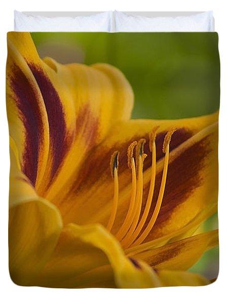 Yellow Rising Duvet Cover by Matthew Blum