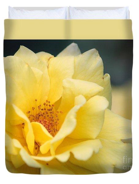 Yellow Rose Macro Duvet Cover by Carol Groenen