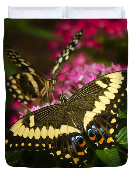 Yellow Swallowtail Butterflies  Duvet Cover by Saija  Lehtonen