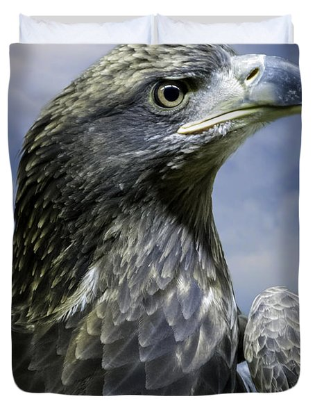 Young Bald Eagle Duvet Cover by F Leblanc